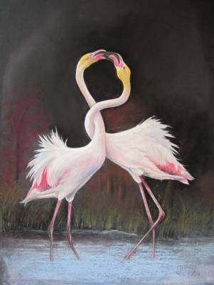 Jeanne Mercier - Flamands Roses