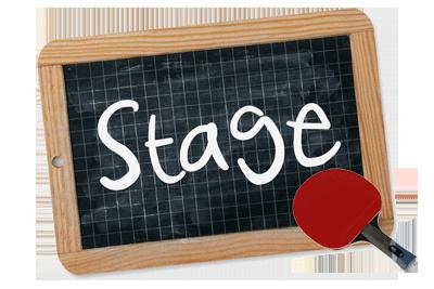 Mini stage de Tennis de Table | Magny-les-Hameaux